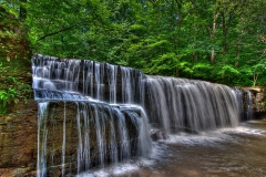 Hidden Falls (Landscape and Floral)