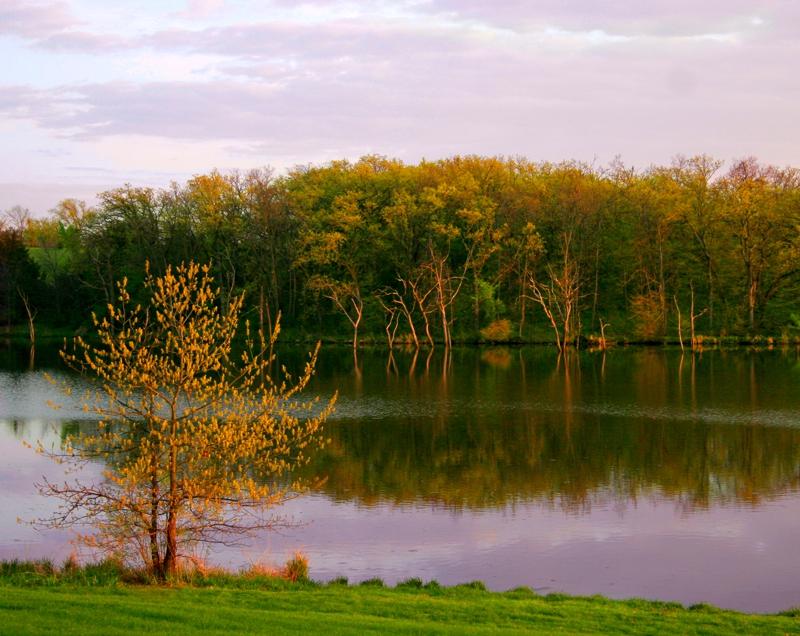 West Lake Evening